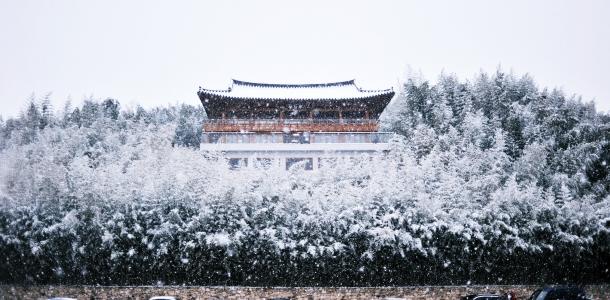 담양-죽녹원-겨울-대나무-눈