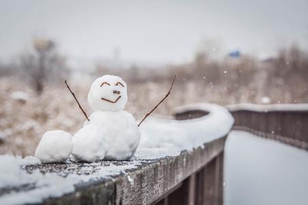 눈사람-만세-눈-겨울-생태공원