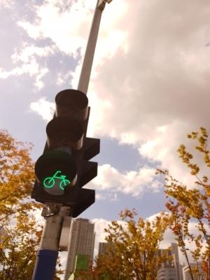 신호등-자전거-감성-하늘-단풍