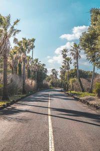 road-asphalt-아스팔트-야자수-하늘
