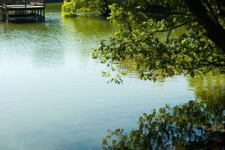 자연-풍경-여름-초록-반영
