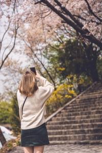 벚꽃-스냅-사진-꽃놀이-portrait