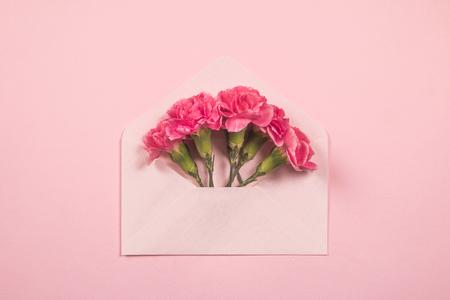 카네이션-편지봉투-편지-꽃-감사