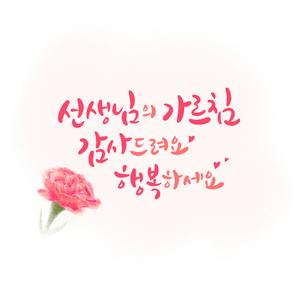 carnation-카네이션-스승의날-가정의달-은혜