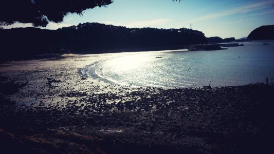 해변-바다-여행-이작도-섬