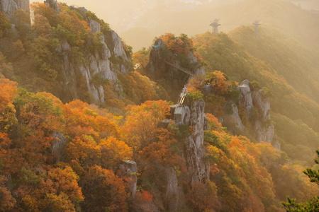자연-nature-가을-단풍-대둔산