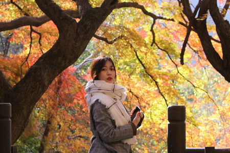 가을-단풍-사람-여자-가을풍경