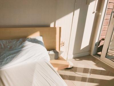 햇살-아침-나른함-빛-평화로움