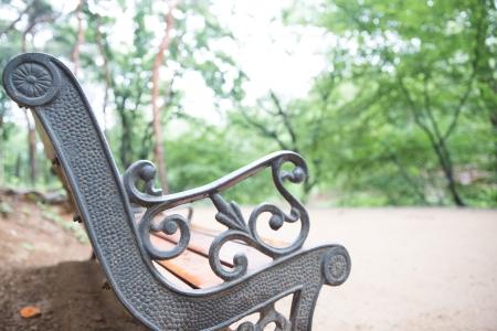 의자-선릉-나무와의자-녹색-휴식