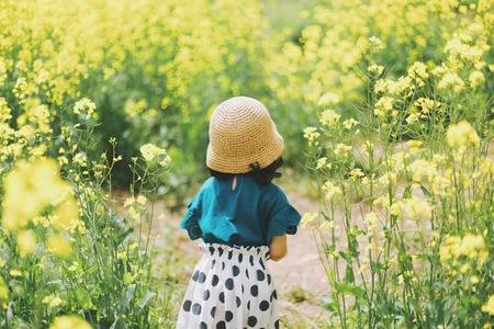 유채꽃-노란색-느낌-색감-필름