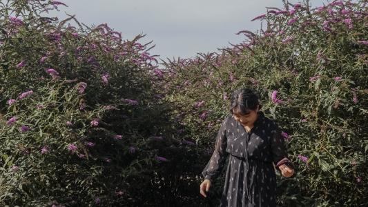 애월-제주도-꽃-수줍음-인물스냅