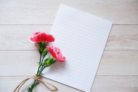 카네이션-카네이션배경-핑크카네이션-카드-편지지