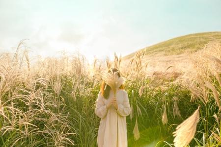 자연-꽃-억새-가을-하늘