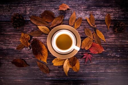 가을-낙옆-낙엽-커피-감성