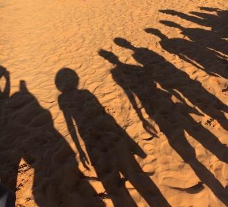 실루엣-그림자-모래-사막-친구
