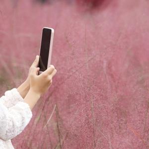 스마트폰-사진찍는모습-감성사진-손-핑크뮬리와스마트폰