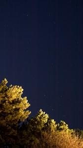 별-밤하늘-장노출-별사진-나무