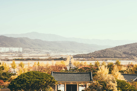 nature-자연-outdoors-옥외-countryside